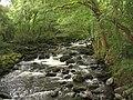 The well named Afon 'Sgethin from the footbridge - geograph.org.uk - 528361.jpg