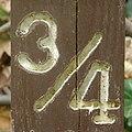 Three Quarter (Sligo Creek, MD) (5675608660).jpg