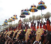 A formation of gold-caparisoned elephants at the Thrissur Pooram. Poorams are Hindu temple-centered festivals popular among both Keralites and tourists.