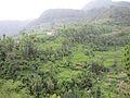 Todke, Majhuwa 45900, Nepal - panoramio.jpg