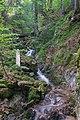 Todtnau - Wasserfallsteig an der oberen Wiese (Hebelweg) Bild 7.jpg