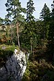 Torsburgen - KMB - 16001000200884.jpg