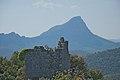 Tour de Salles et Pic Saint Loup en arrière plan.jpg