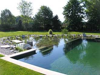Natural pool - The traditional coping on this NSP demonstrates that natural swimming pools can be designed in many ways and do not always have to resemble natural bodies of water.