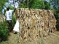 Traditional pit latrine (6394969427).jpg