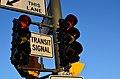 TransitSignalViva.jpg