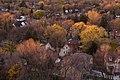 Trees (6366156545).jpg