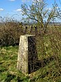 Triangulation pillar, Woolbury Ring - geograph.org.uk - 1243494.jpg