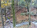 Triestinquellbach und Zufluß über kleinen Wasserfall.jpg