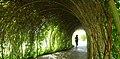 Tunnelveget.jpg