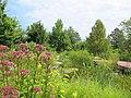 U.S. Botanic Garden in August (23428693579).jpg