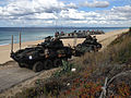 U.S. Marines and Portuguese forces conduct an amphibious landing (22320735322).jpg
