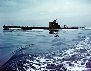 USS Seiche SS-171