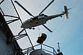 US Navy 070918-N-5148B-023 n MH-60S Seahawk helicopter, assigned to the.jpg