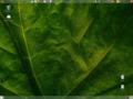 UbuntuFeistyFawnDesktop.png