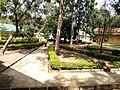 University of jos department of medicine.jpg