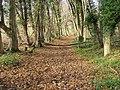 Unplanned bridleway challenge - geograph.org.uk - 1055754.jpg