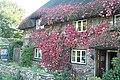 Upton Cottage, Vernham Dean - geograph.org.uk - 985321.jpg
