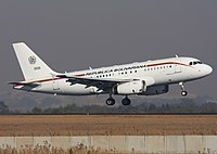 Venezuelan Air Force Airbus A319CJ Lebeda.jpg