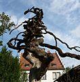 Verknoteter Baum - panoramio.jpg