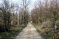 Via degli Dei, San Benedetto Val di Sambro, Pian di Balestra 03.jpg
