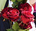 Vier Rote Rosen.JPG