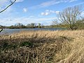View across Westebere Lakes - geograph.org.uk - 371239.jpg