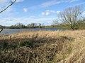 View across Westebere Lakes - geograph.org.uk - 371239.jpg