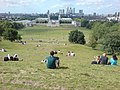 View from General Wolfe Statue, Greenwich Park - geograph.org.uk - 1362787.jpg