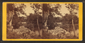 View on the French Broad River, from Robert N. Dennis collection of stereoscopic views.png