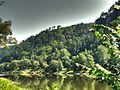 View over the Elbe - panoramio.jpg