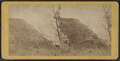 View up the River from the top of the Palisades, by E. & H.T. Anthony (Firm) 2.png