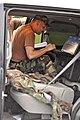 Virginia Defense Force member working.jpg