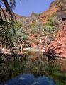 Wadi, Socotra Island (13887123310).jpg