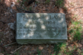 Walter Law grave.png