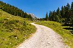 Wanderweg, Wilder Kaiser, Tirol, 160623, ako.jpg