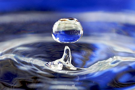 A drop of water.