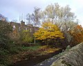 Water of Leith - geograph.org.uk - 129743.jpg
