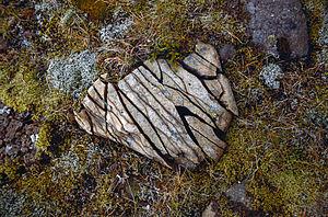 een door vorstverwering gespleten steen, Zuid IJsland: https://nl.wikipedia.org/wiki/Fysische_verwering