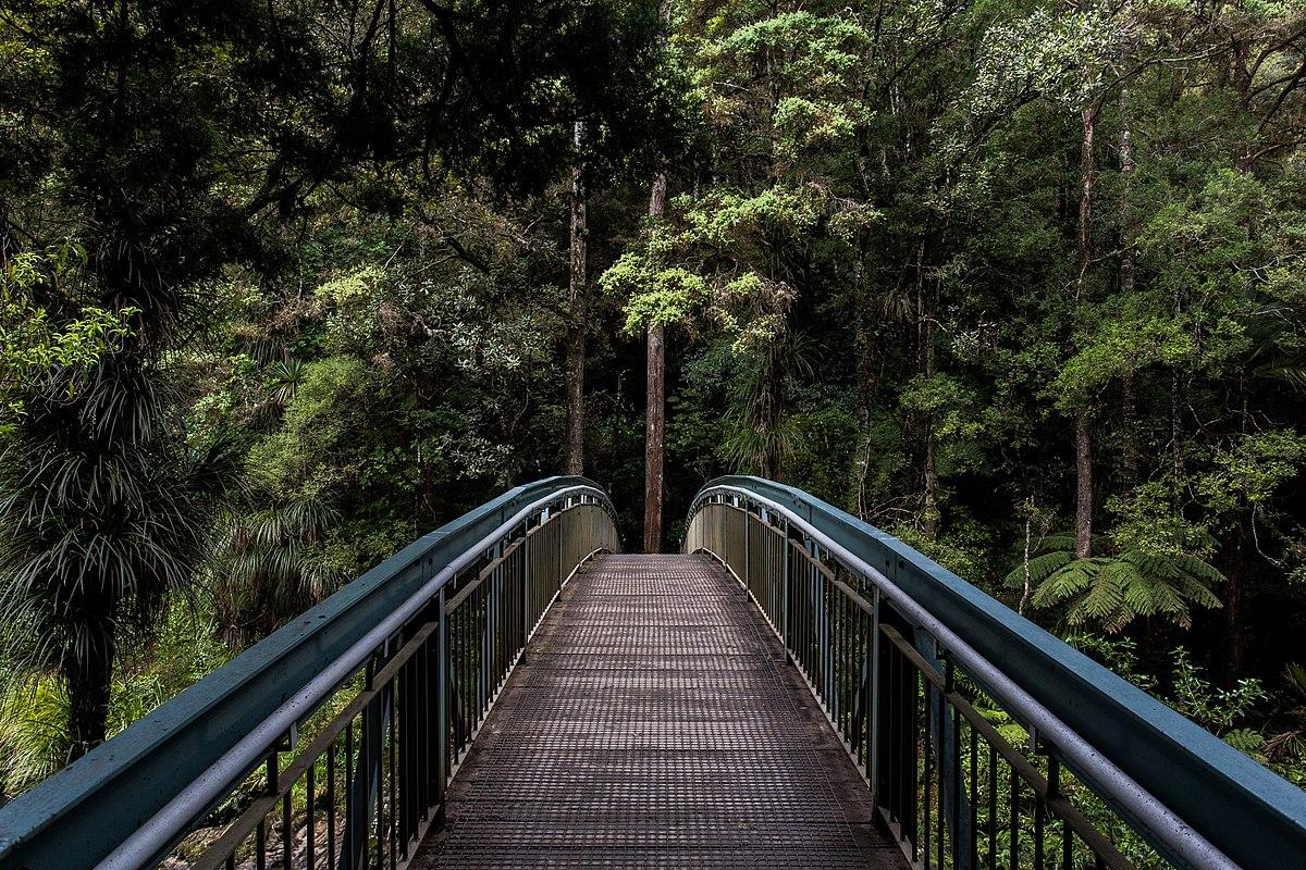 File Whangarei Falls New