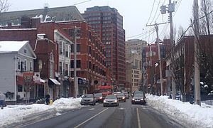 Whitney Ave, New Haven.jpg