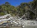Whitsunday Islands National Park (24087900215).jpg