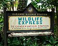 Wildlife Express Harambe Station Train.jpg