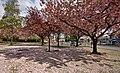 Willerby Square IMG 2826 - panoramio.jpg