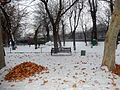Winter, English park, ArmAg (5).jpg
