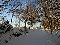 Winter 04 small.JPG