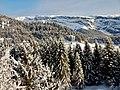 Winterlandschaft bei Laax - panoramio (1).jpg