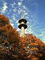 Wolfsburg Turm.JPG