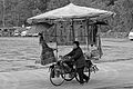 Woman pushing her loeded bike.jpg