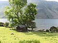 Wooden barn and tree on Wastwater shoreline - geograph.org.uk - 842605.jpg